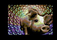Pearls for Pigs Screenshot
