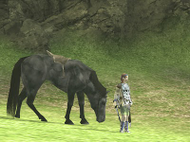 Shadow of the Colossus - Wanda&Agro