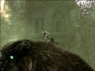 Shadow of the Colossus - Head louse