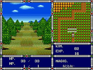 Sword of Vermilion Mega Drive ingame 1 Screenshot